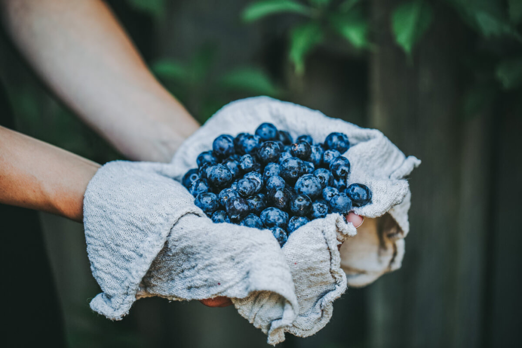 Image Berries - Workplace Stress Article